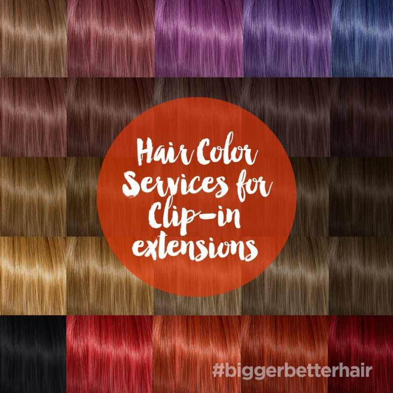 Hair Color Services for Clip In Extensions
